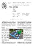 Issue 49 Nov. 2020